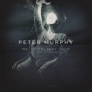 peter murphy mr moonlight dvd